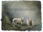 Jeannine Bourret, Comme la neige qui tombe 10 x 13